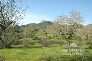 S'Horta - Solar cerca del campo de golf Vall D'Or