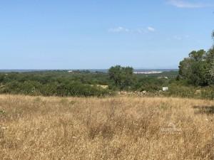 Proyecto nuevo cerca de Santanyi