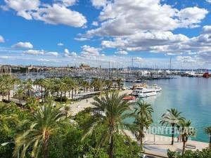Palma/Paseo Marítimo - Bonito apartamento con diseño moderno y vistas espectaculares