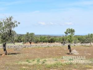 Proyecto de nueva construcción - casa de campo en un lugar maravilloso en Santanyí