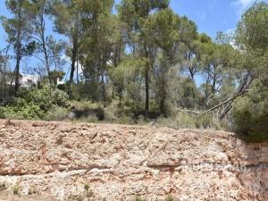 Parcela con permiso de construcción existente en Cala Santanyí