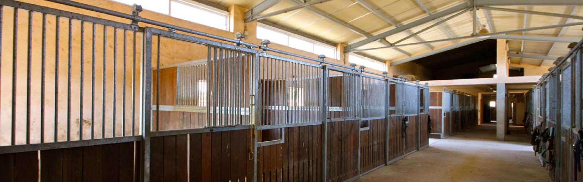 Finca para amantes de los caballos - Manacor