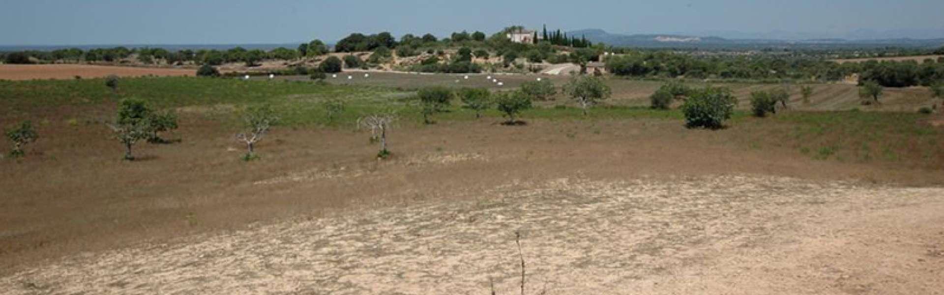 Impresionante proyecto entre Cas Concos y Santanyi