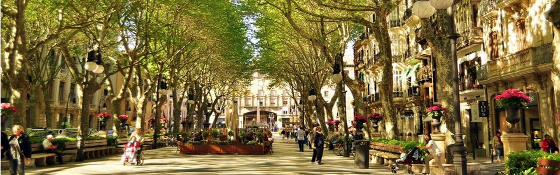 Palma/casco antiguo - Residencias de lujo (áticos) en el corazón de la ciudad
