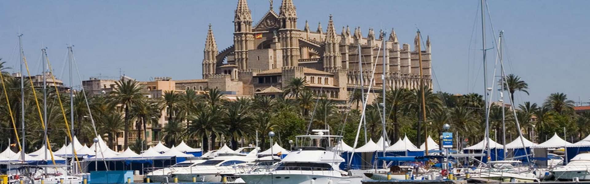 Palma/Paseo Marítimo - Vista al mar/puerto Lofts en la mejor ubicación (apartamentos/áticos)